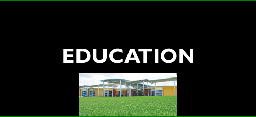 Synthetic turf for education